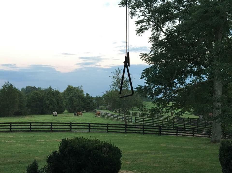 view from the verandah.jpg