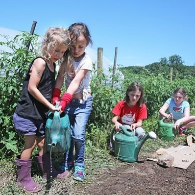 Junior Farmers Camp! We still have spots for Sessions 1, 2 & 3 (July 22-26, July 29-Aug 2, Aug 5-9)! (Session 4 is sold out 😪) Learn more or register HERE: https://www.rocklandfarm.org/juniorfarmers