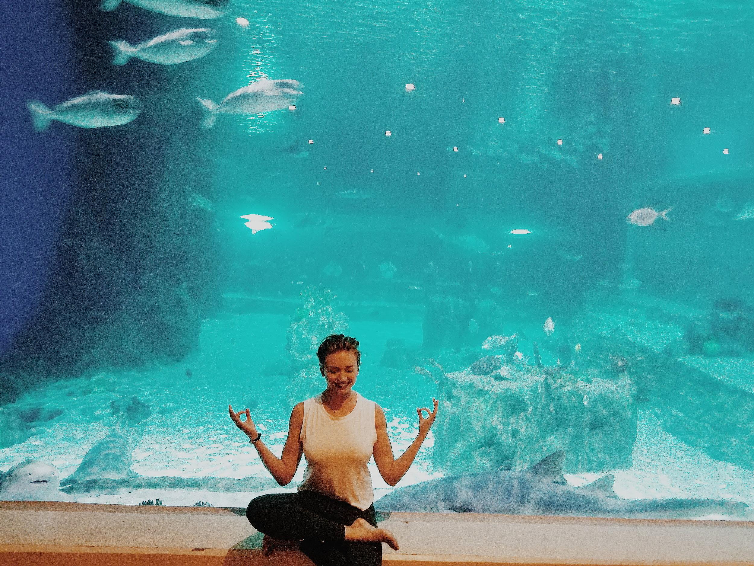 amanda jones yoga meditation sharks