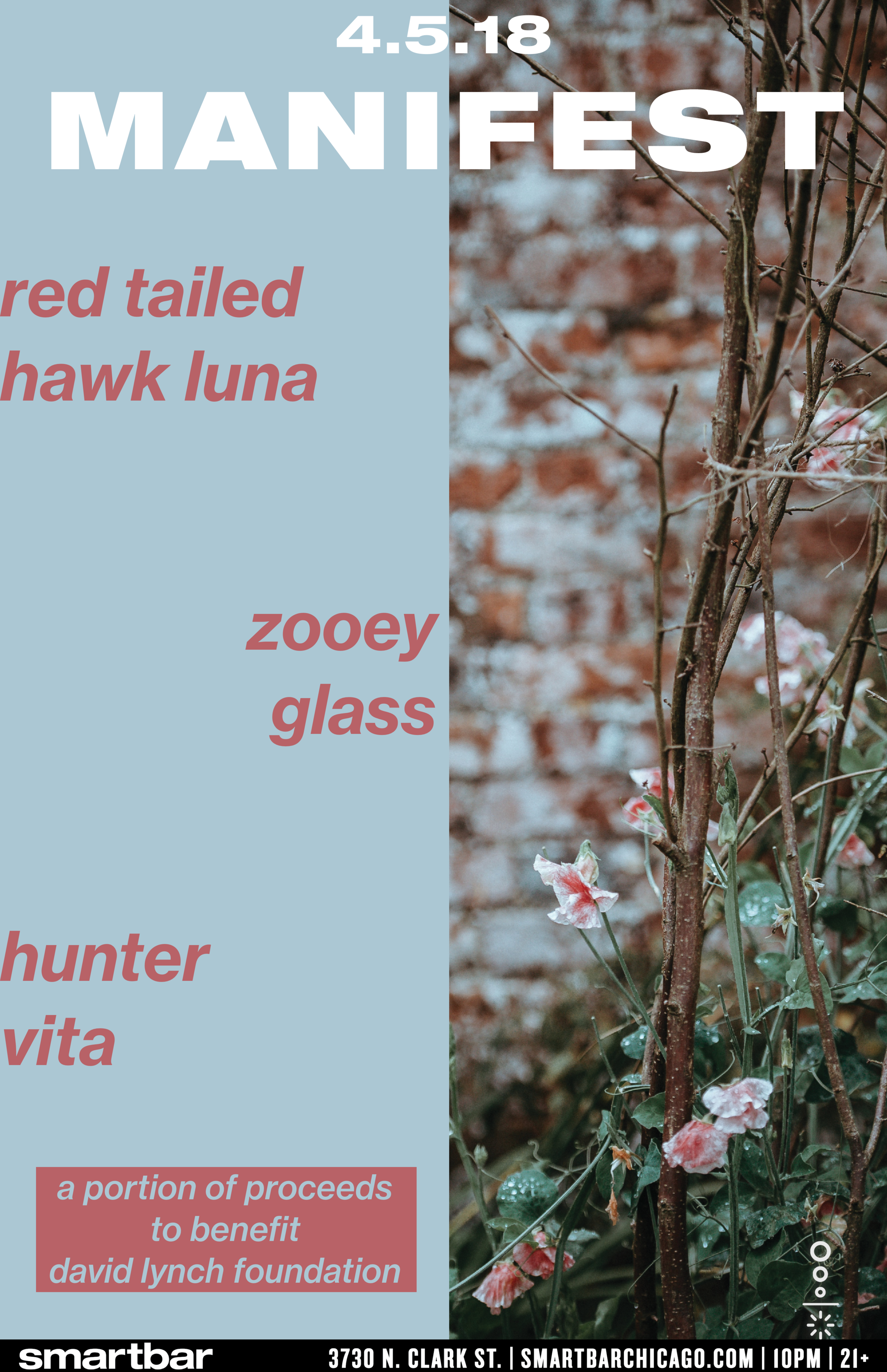 red tailed hawk luna.png