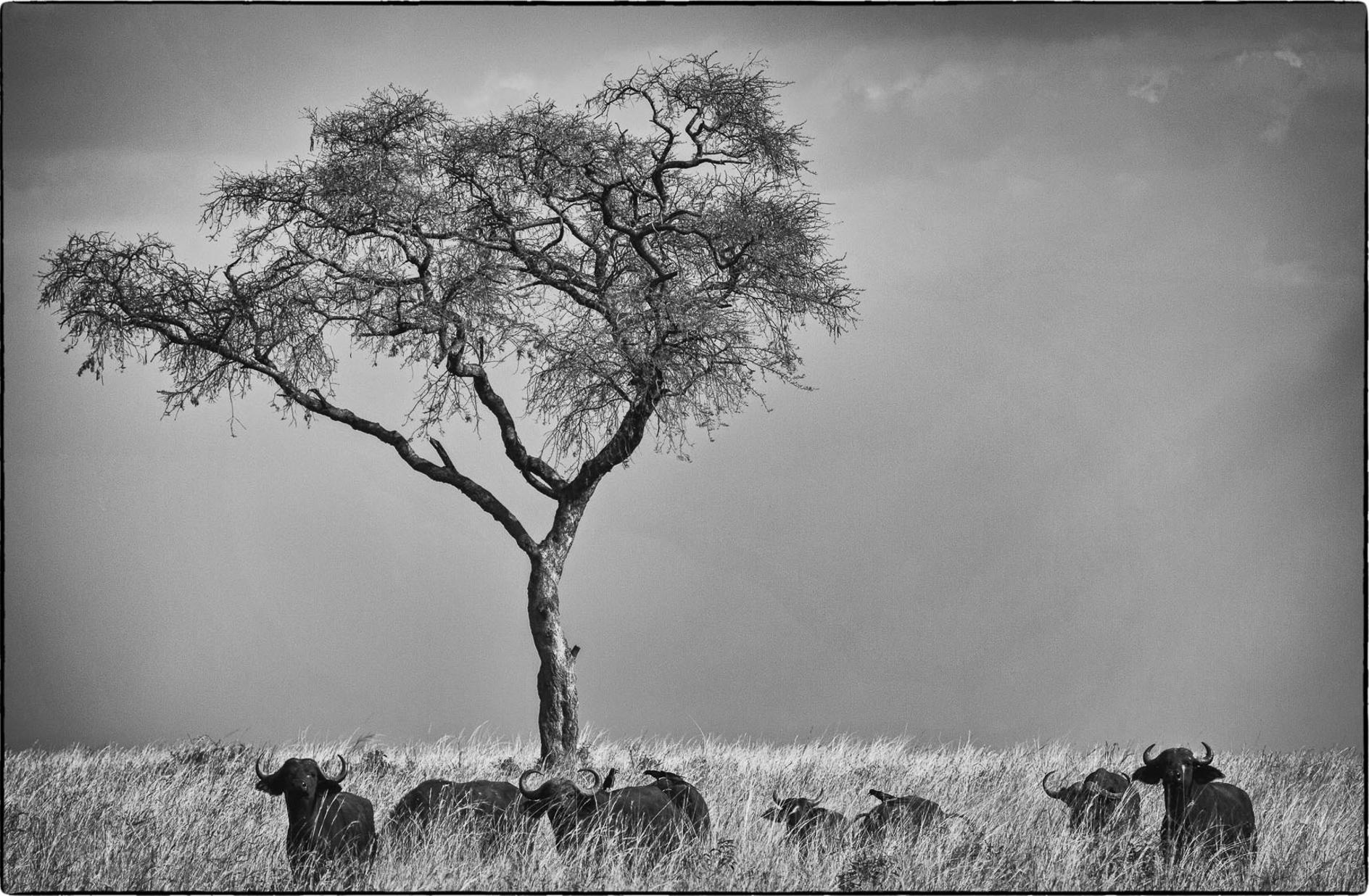 Cory-Richards-Photographer-UGANDA-5.jpg