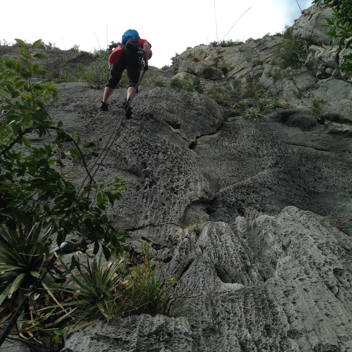 The token climbing ass shot, butt on descent. Photo by Lida Frydrychova.