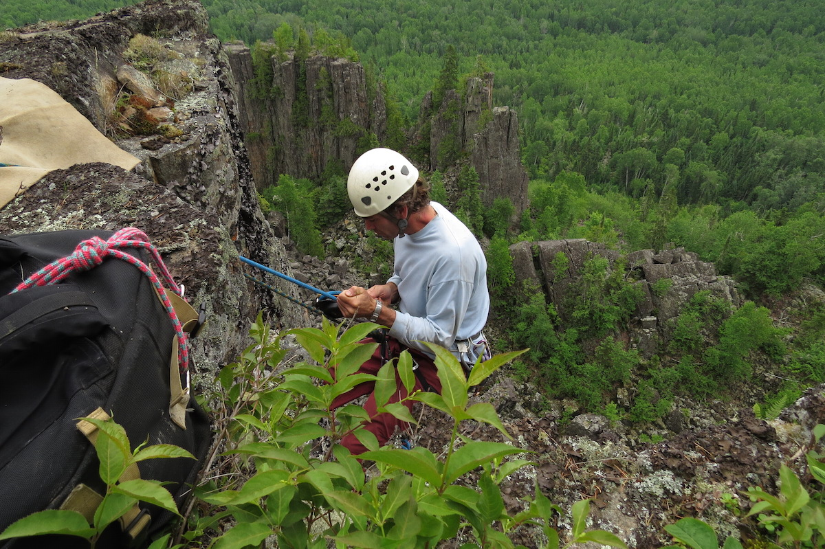 Rapelling down the cliff to the nests. Photo by Brian Ratcliff.