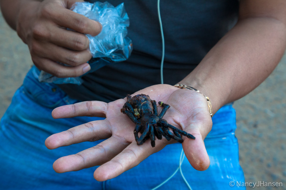 How about deep fried tarantula? This local man was eating them like potato chips.