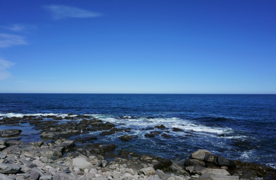 The sea! Photo by Kara Folkerts.