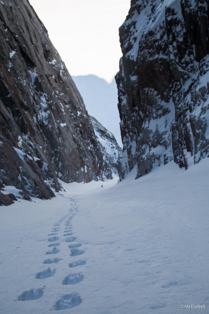 Boot-pack tracks in Polar Star Couloir. Photo by Dan Evans.