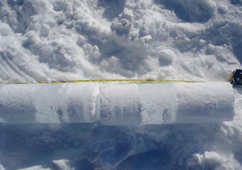 Ice core sample. Photo: Alison Criscitiello.