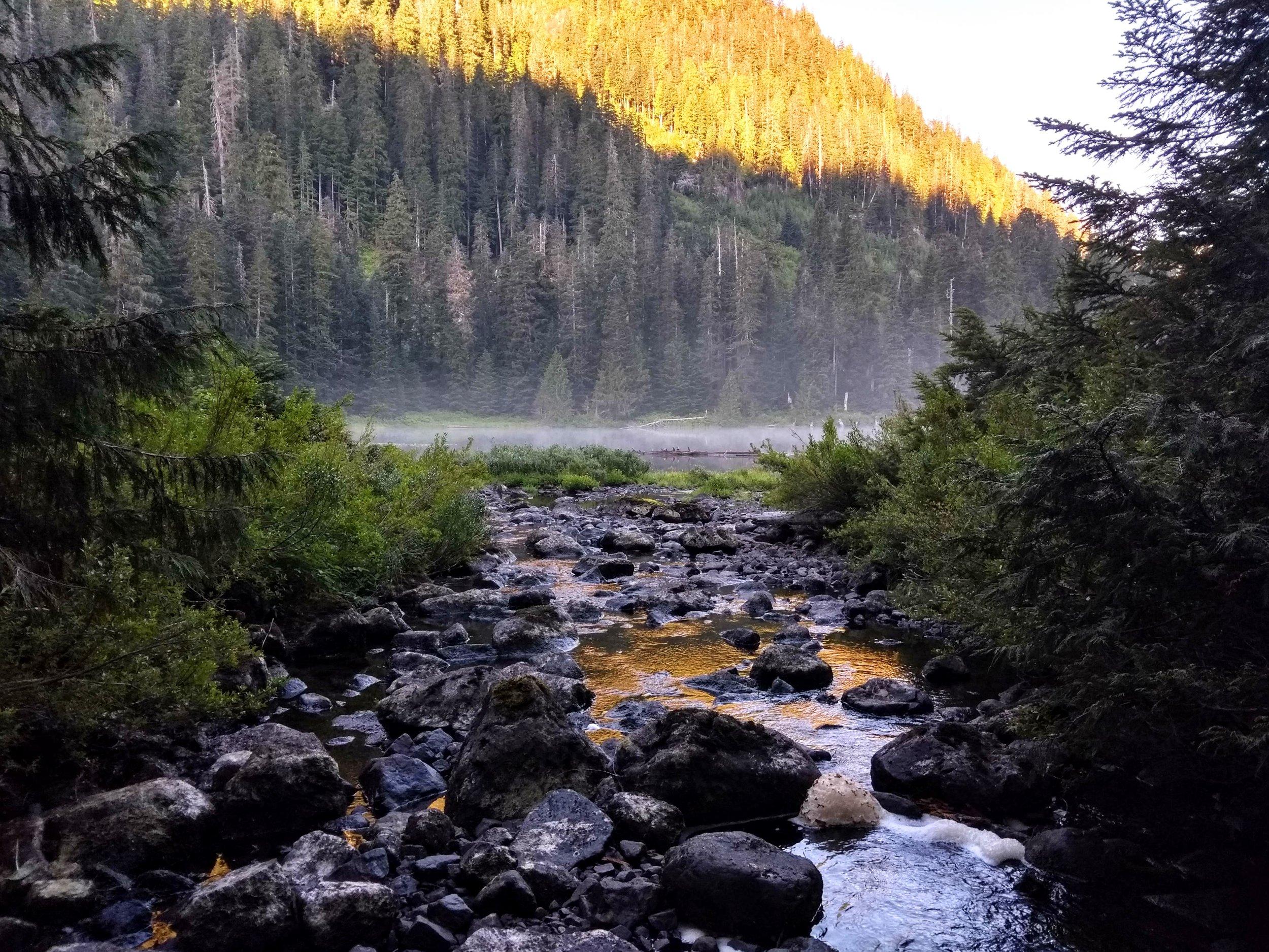 Creek flowing into John Fraser Lake