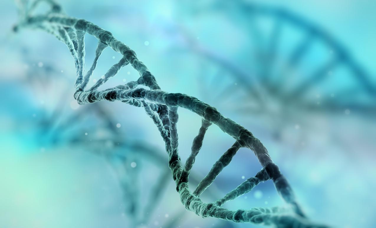 iStock-508496956-gene.png