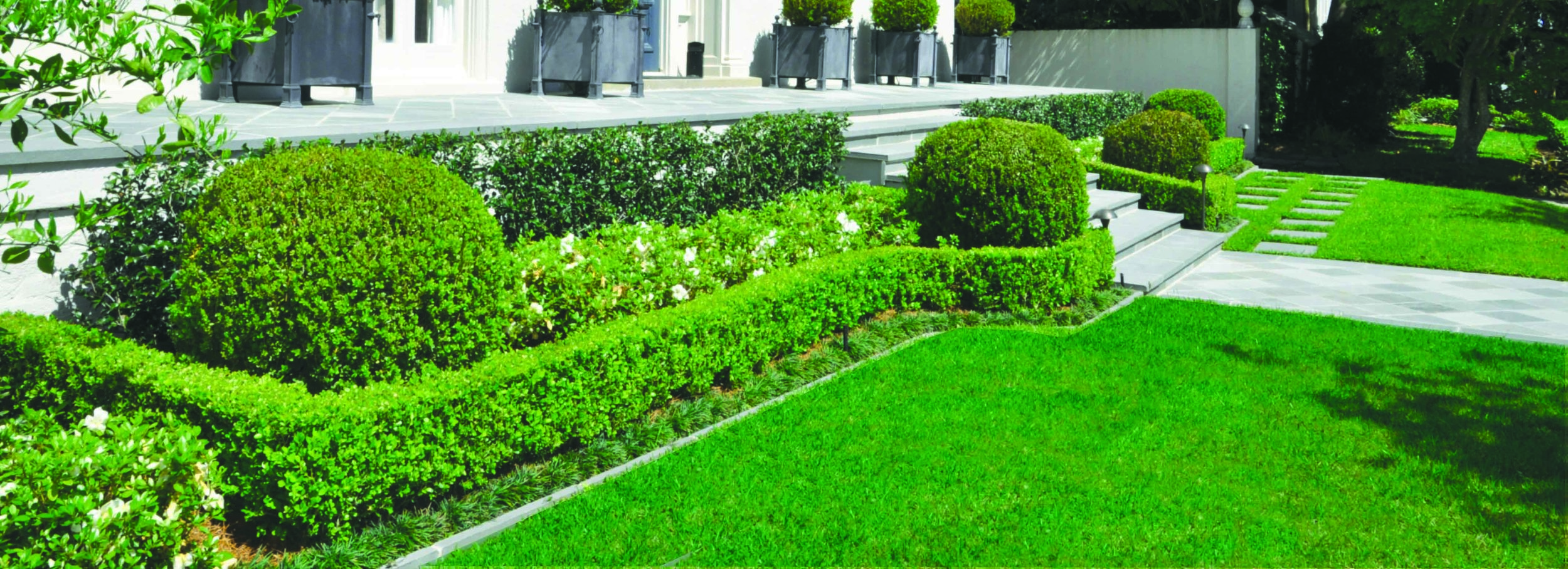 5 Tips for a beautiful lawn -