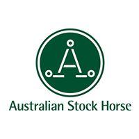 Australian Stock Horse.jpg