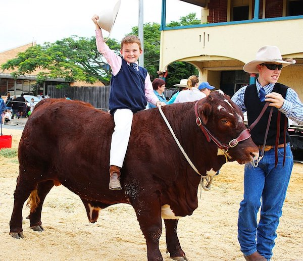 BEEF+WEEK+CATTLE+COMPETITION+&+PARADE+2015+(719)_preview.jpeg