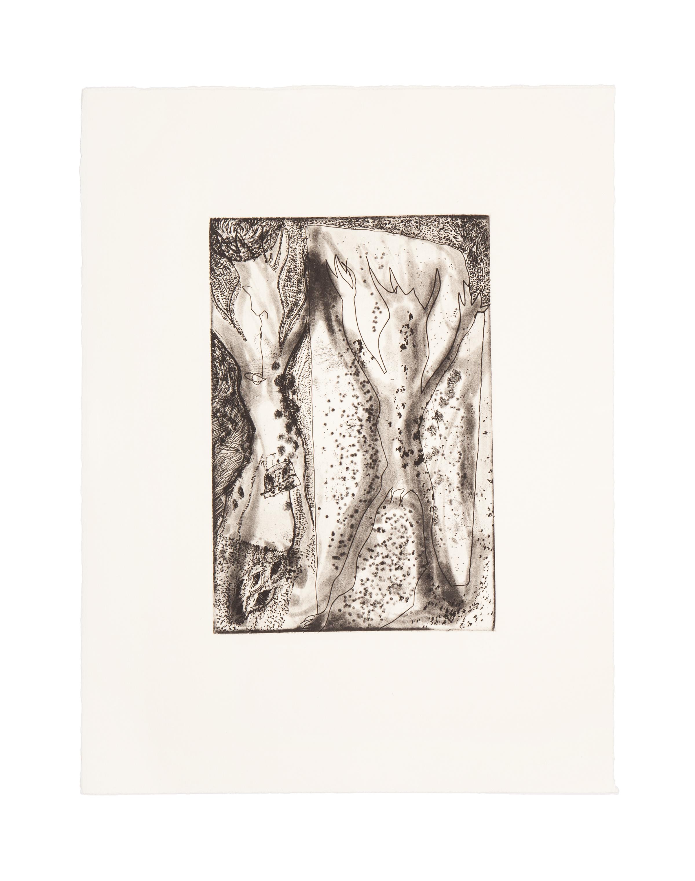 BREAK  Intaglio/monoprint  Image: 6 x 8.9 inches  Paper: 11 x 15 inches  Printed by 10 Grand Press  © 2008 Carol Morrison