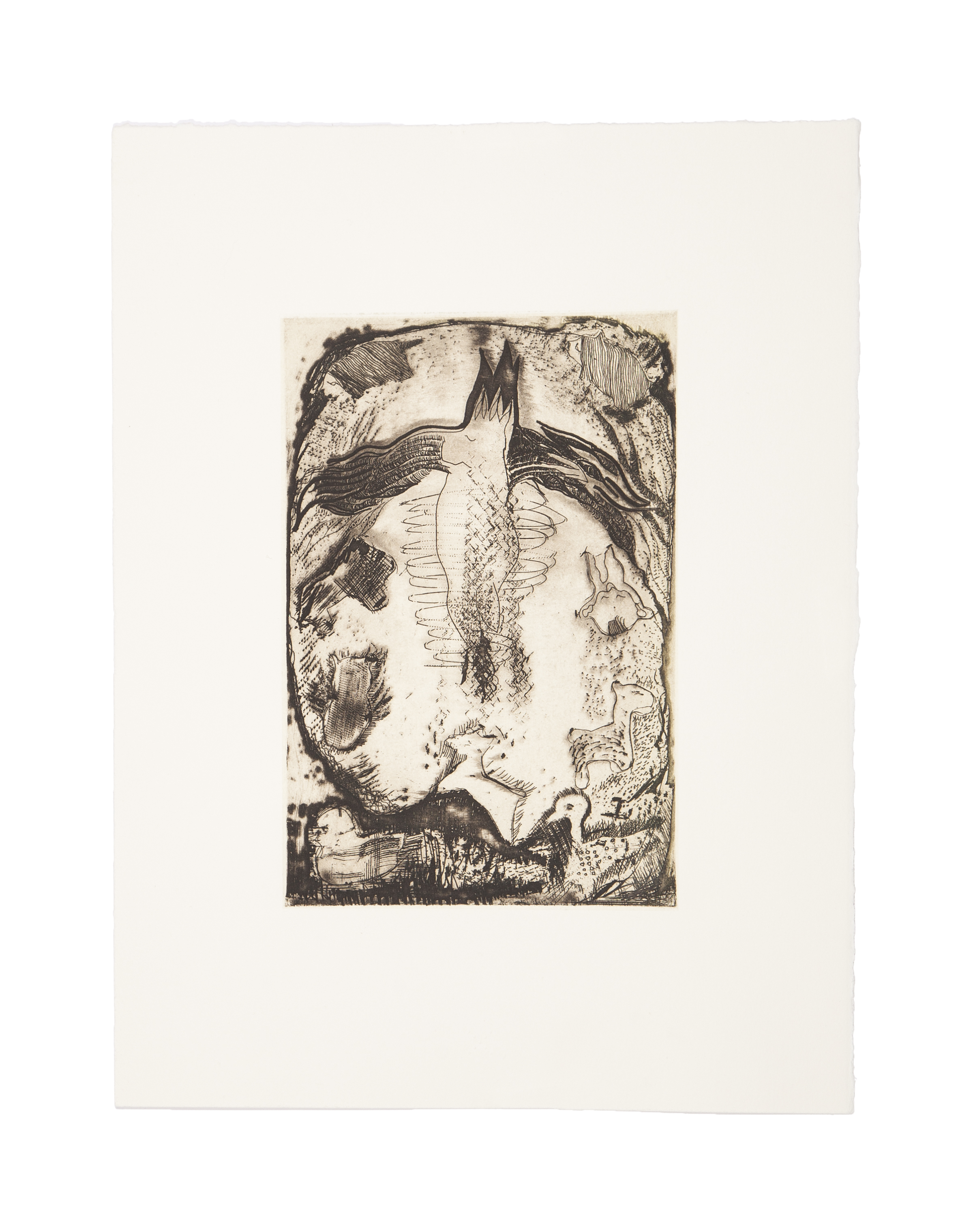 THE BABBU  Monoprint/etching  Image: 5.75 x 8.9 inches  Paper: 11.25 x 15 inches  Series of three  Printed by 10 Grand Press  © 2008 Carol Morrison