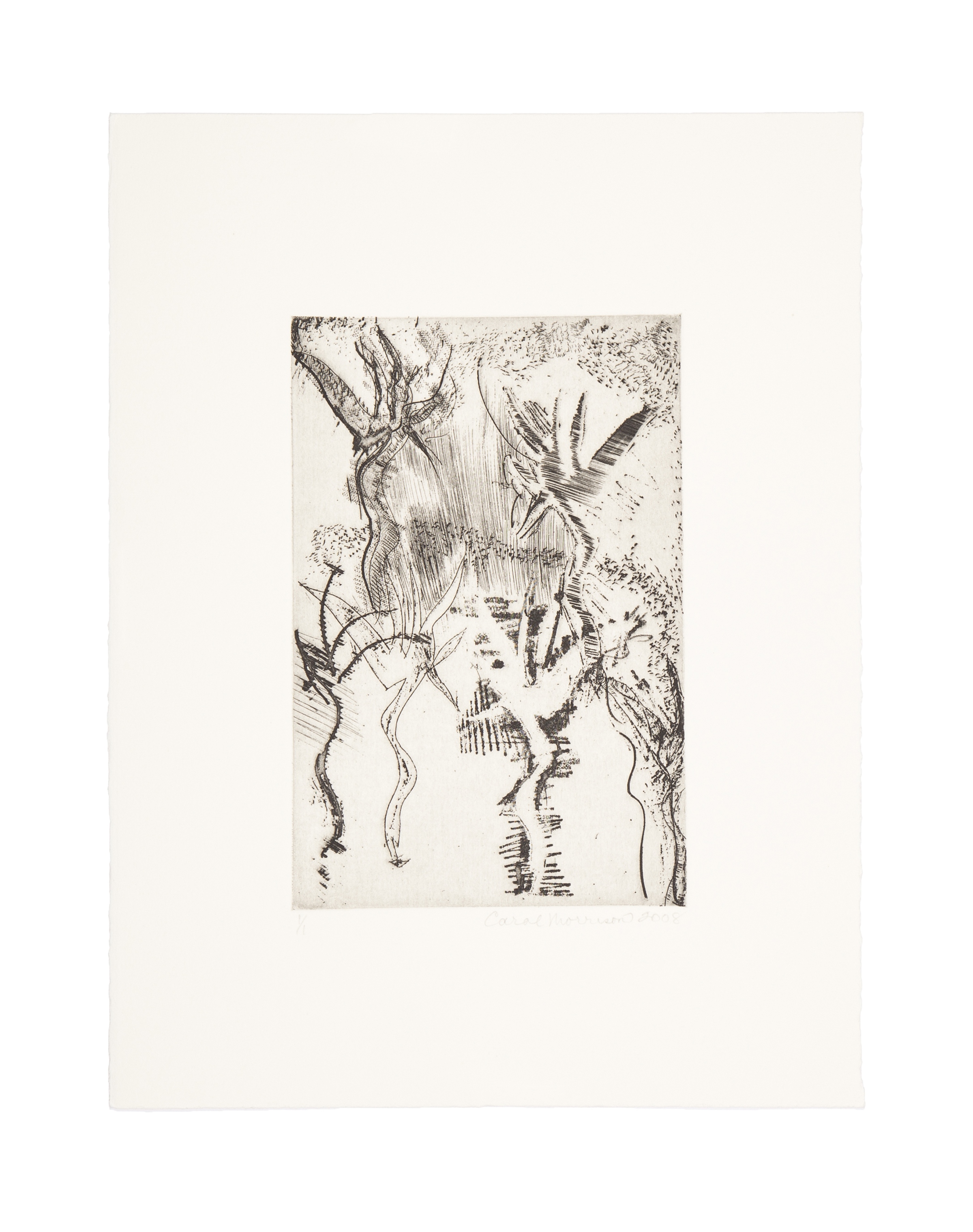 THE NYMPHS  Intaglio  Image: 5.85 x 8.9 inches  Paper: 11.25 x 15 inches  Printed by 10 Grand Press  © 2008 Carol Morrison