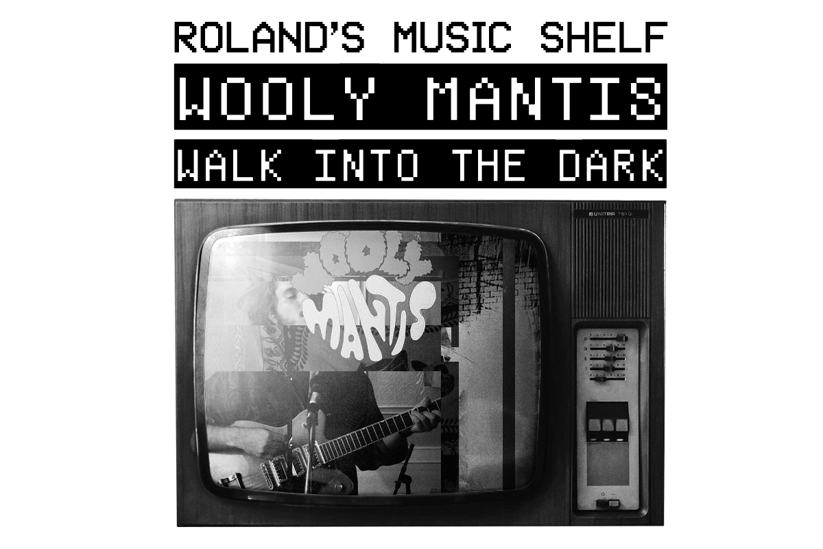Roland's Music Shelf-wooly.jpg