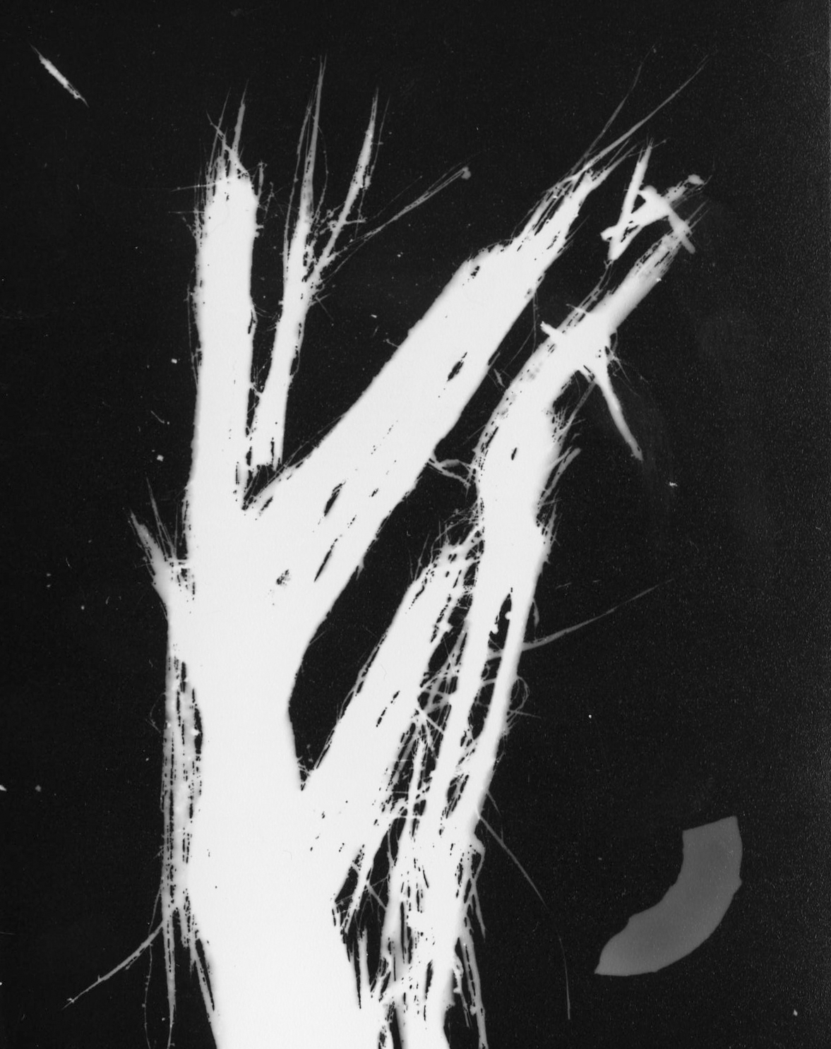Duran_Final(Art&Place)-6.jpg