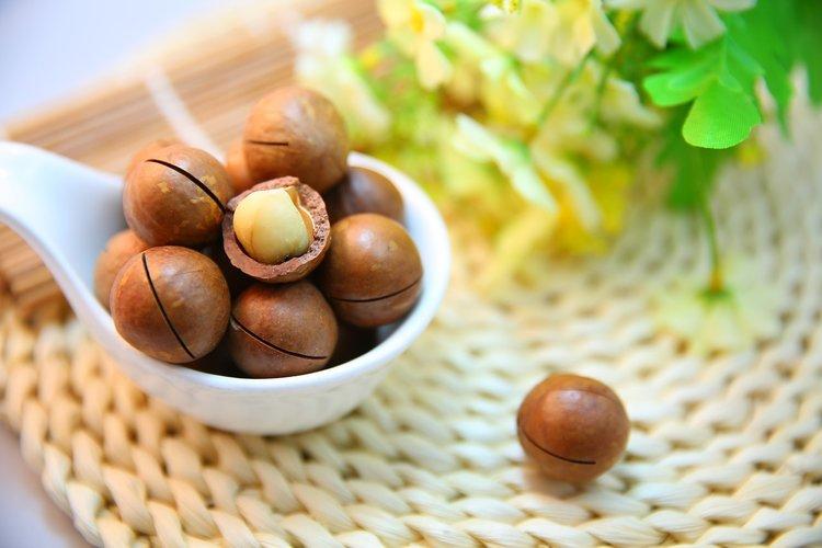 macadamia-nuts-1098170_1280.jpg