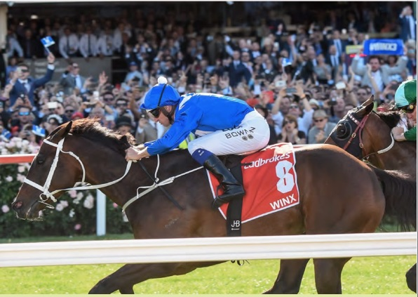 Cox Plate Marquee Tickets