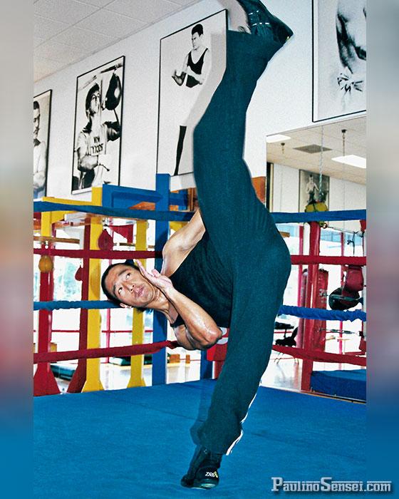 ig_PA-HK-Kick_PaulinoSensei.com.jpg