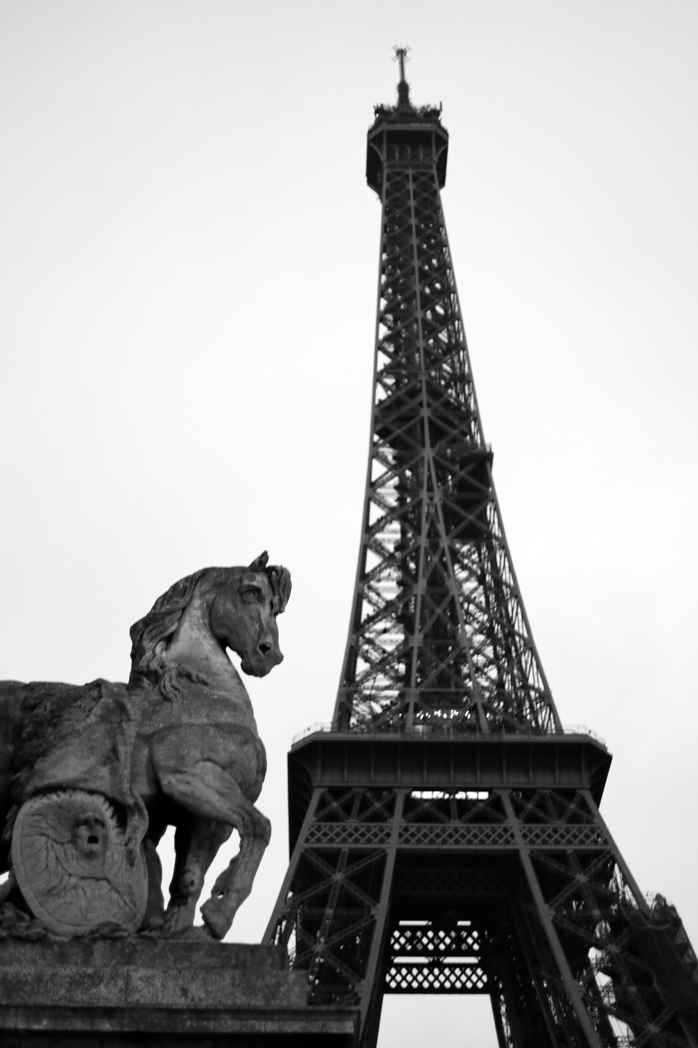 Horse statue under the Eiffel Tower, Paris, France   https://www.ebay.com/itm/263679763929?ssPageName=STRK:MESELX:IT&_trksid=p3984.m1555.l2649