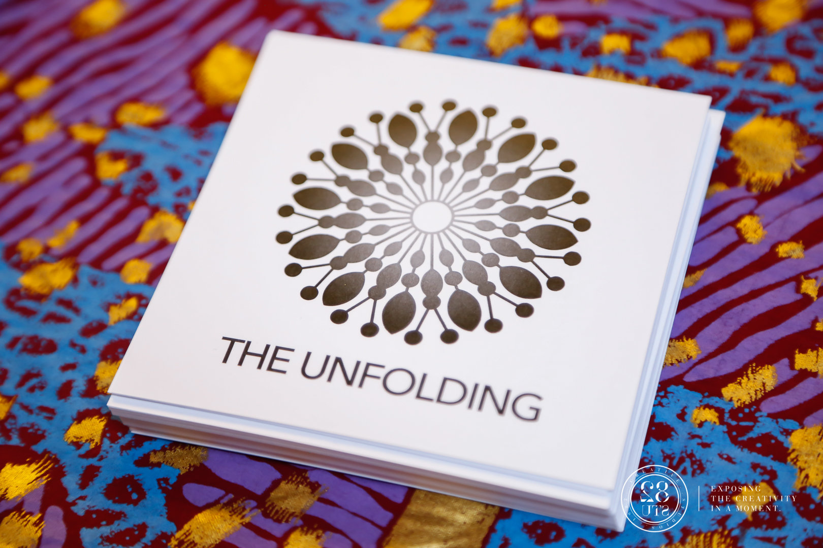 The Unfolding-The Unfolding-0039.jpg