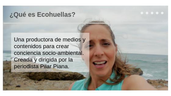 ¿Qué es Ecohuellas_.png