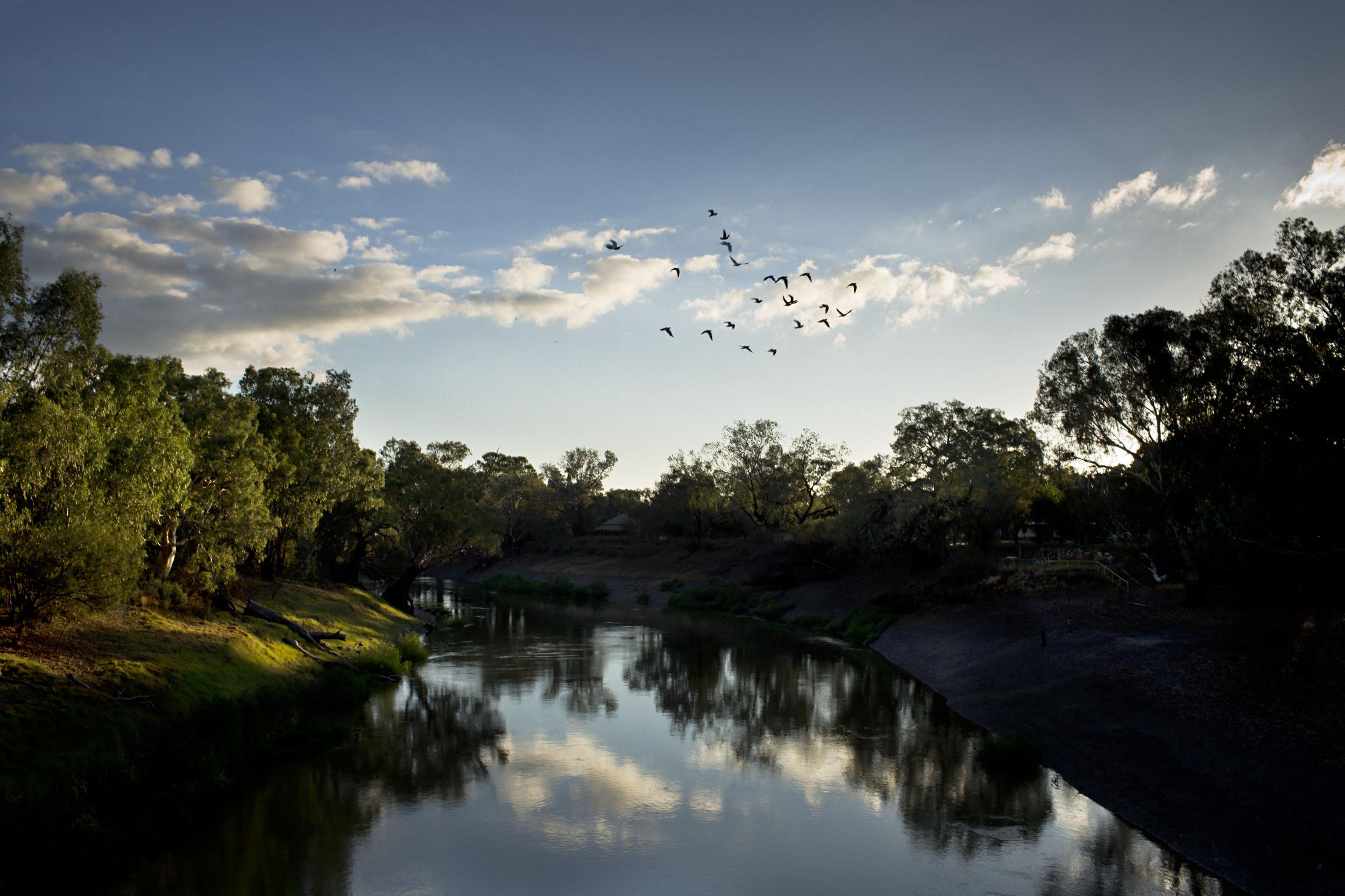 The Darling river, lifeblood to the Barkindji people in Wilcannia, NSW.