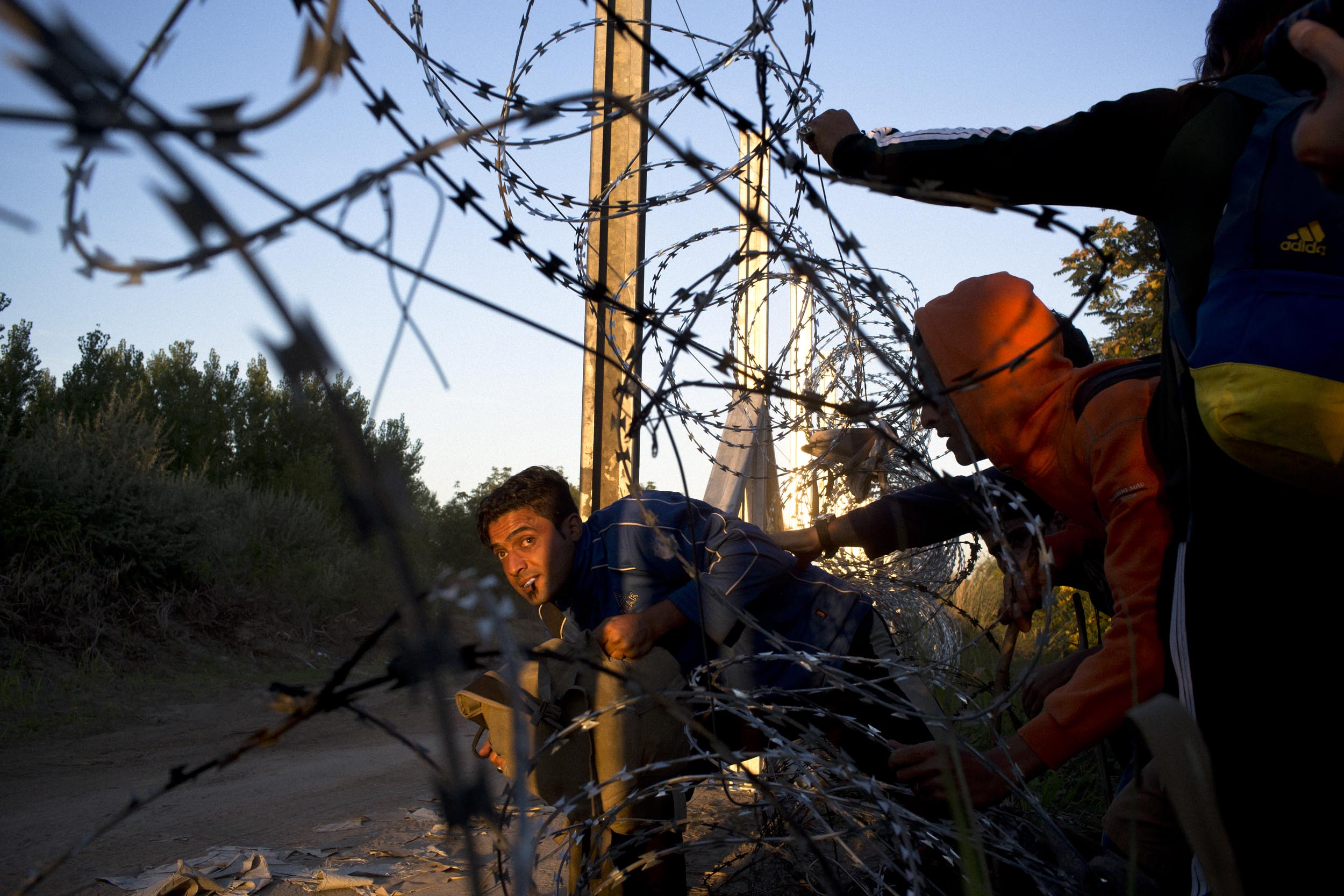 Horgoš, Serbia. Refugees sneak through a border fence to evade patroling Hungarian police at the Serbia/Hungary border.