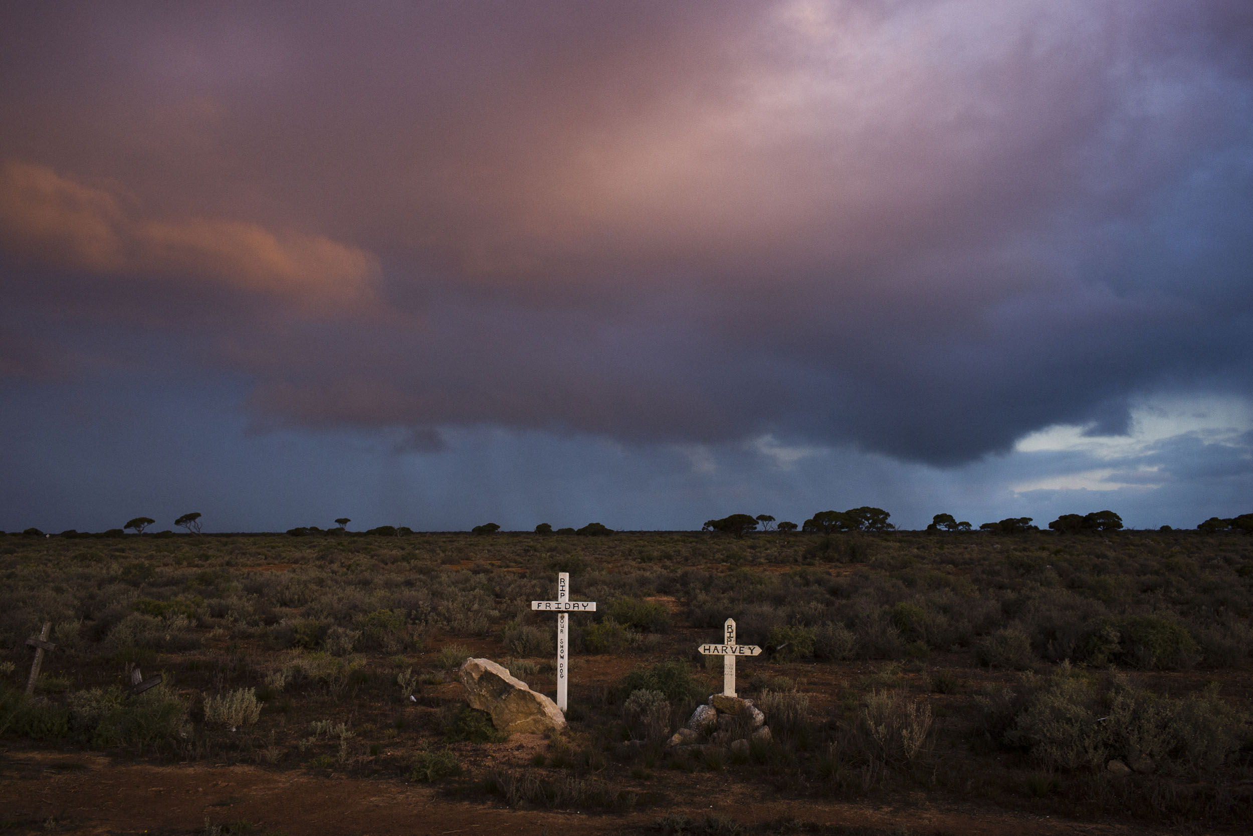 A pet cemetary on the side of the Eyre Highway, Madura, Western Australia.