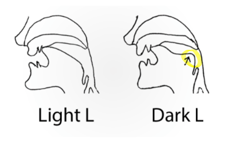 The Dark L