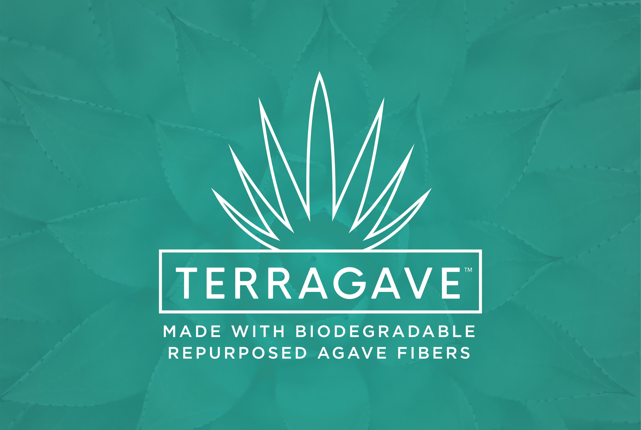 MTQ_Terragave_Web_Slideshow_Graphics_V1_Logo_BackgroundTeal_TM.jpg