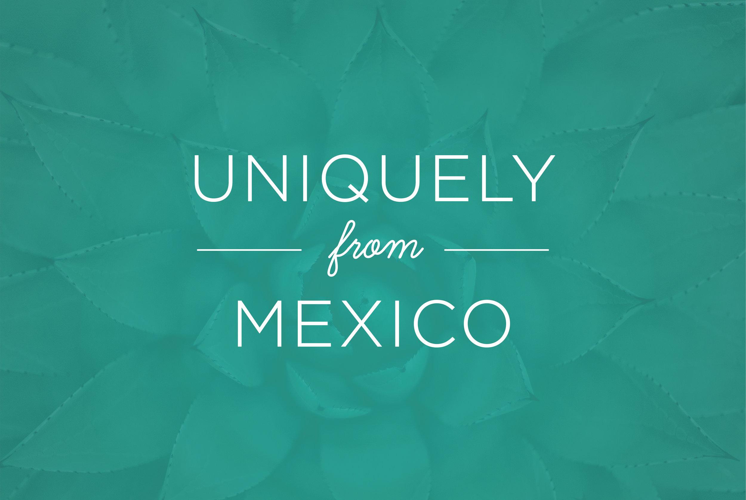 MTQ_Terragave_Web_Slideshow_Graphics_V1_MexicoMade_BackgroundTeal.jpg