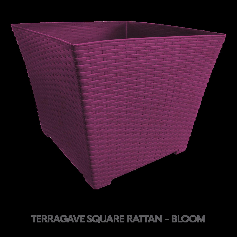6 TERRAGAVE SQUARE RATTAN - BLOOM.png