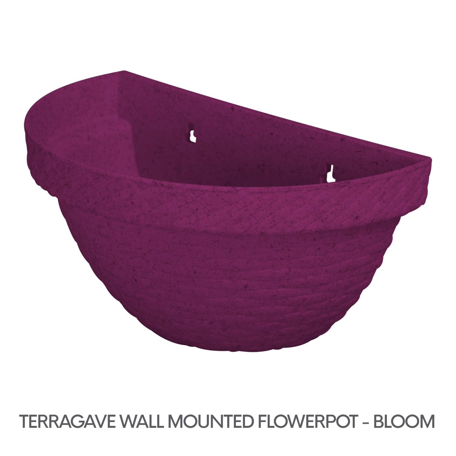 1 TERRAGAVE WALL MOUNTED FLOWERPOT - BLOOM.png