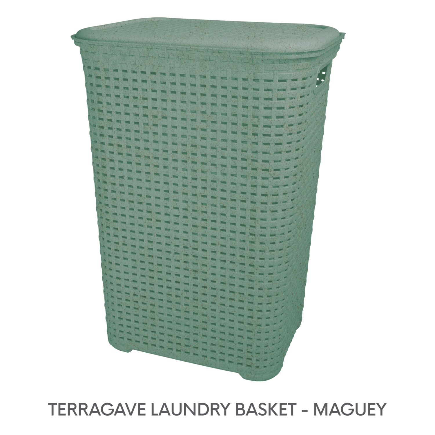 1 TERRAGAVE LAUNDRY BASKET - MAGUEY.png