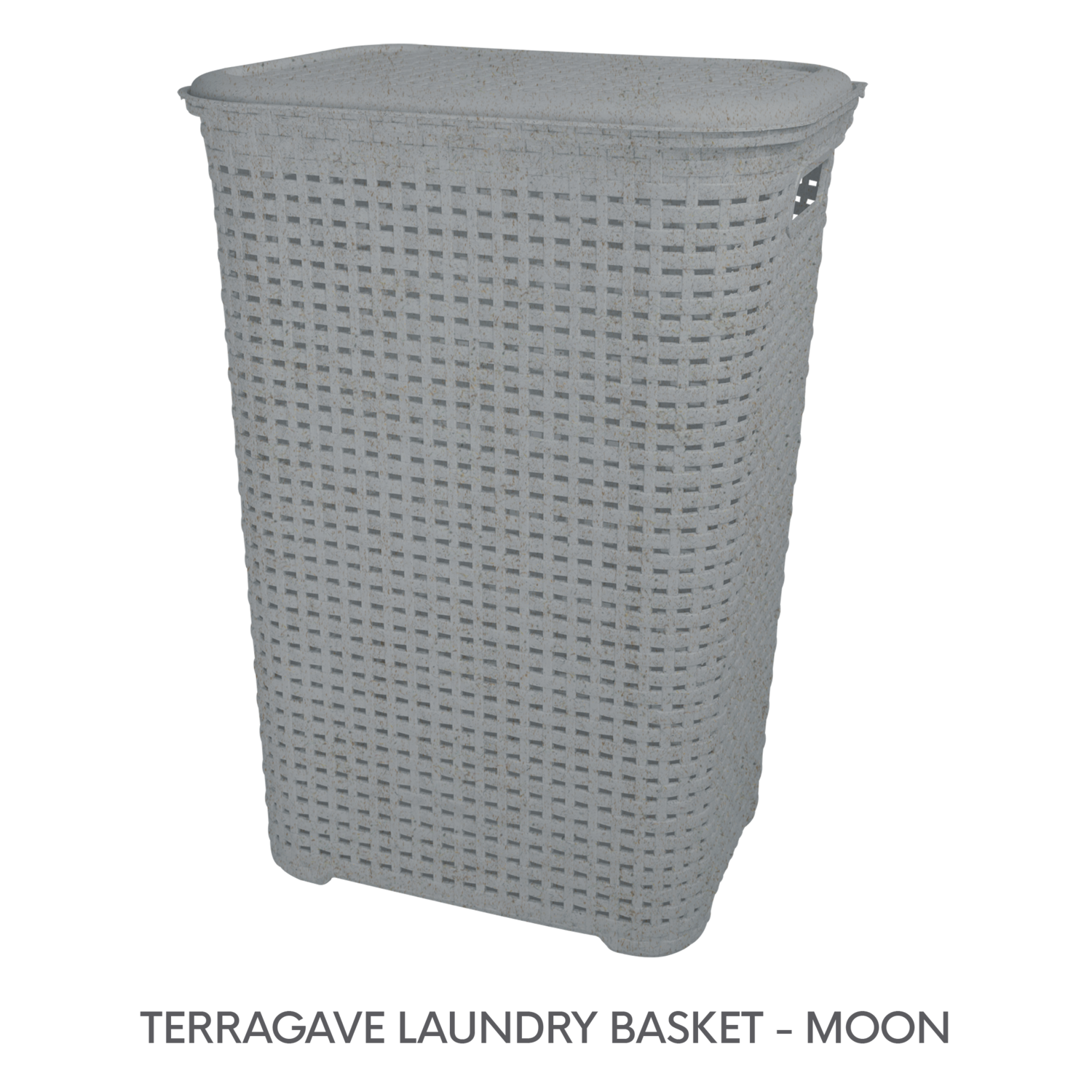 3 TERRAGAVE LAUNDRY BASKET - MOON.png