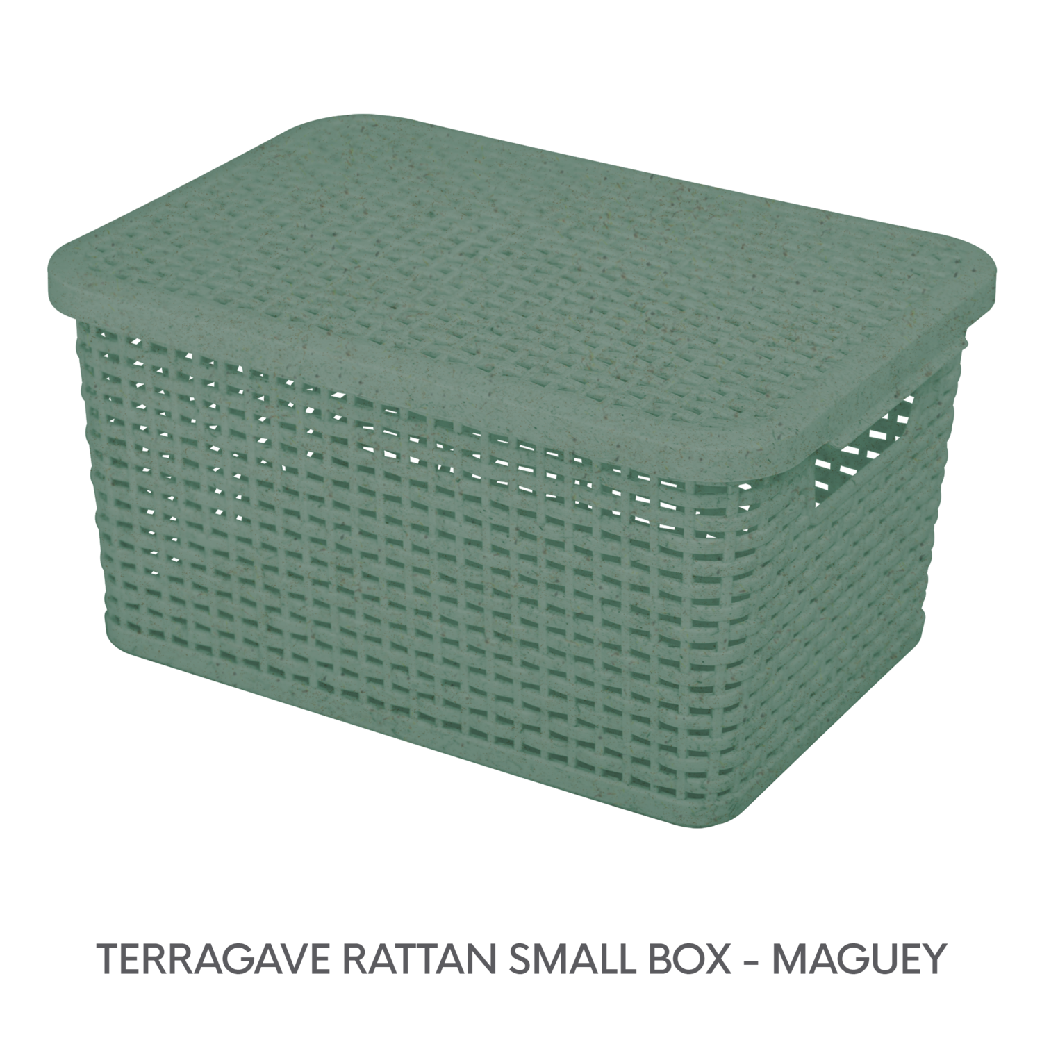 4 TERRAGAVE RATTAN SMALL BOX -MAGUEY.png
