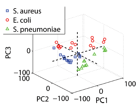 Rapid identification of bacteria in blood cultures by mass-spectrometric analysis of volatiles.png