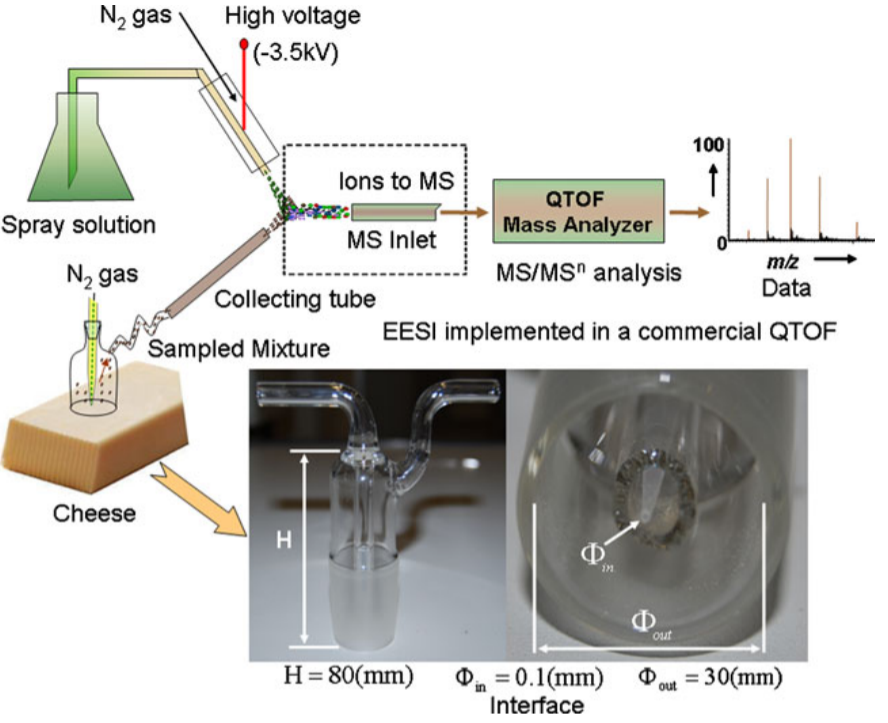 Sampling analytes from cheese products for fast detection using neutral desorption extractive electrospray ionization mass spectrometry.png