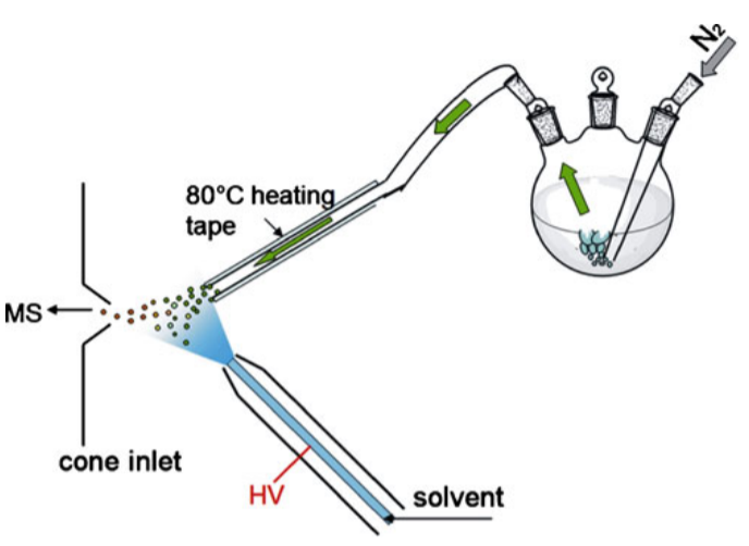 Simultaneous sampling of volatile and non-volatile analytes in beer for fast fingerprinting by extractive electrospray ionization mass spectrometry.png