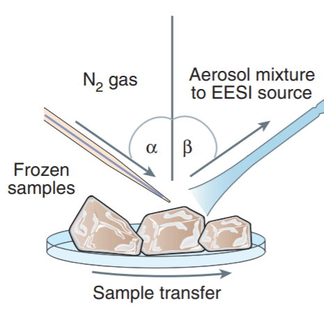Neutral desorption sampling of biological surfaces for rapid chemical characterization by extractive electrospray ionization mass spectrometry.png