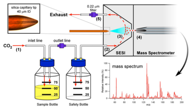 Characterizing Bacterial Volatiles using Secondary Electrospray Ionization Mass Spectrometry (SESI-MS).png