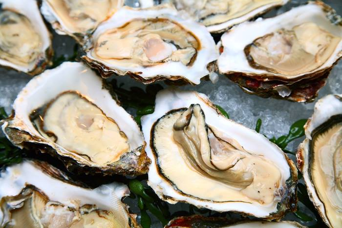 Oyster - About page.jpg