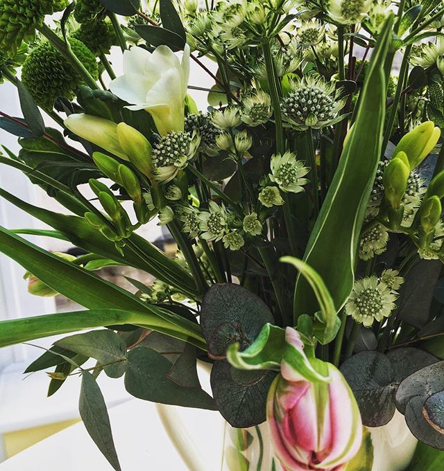 Thanking my client and friend Rebecca @lilac_and_lace_floral_design  for helping me pick beautiful flowers. And for arranging them for me! 😂 let's hope it helps sell our house 😜 . . . #clientlove #flowers #floristry #flowerart #freesia #eucalyptus #tulips #bookkeeping #smallbusiness #smallbusinesslove #womeninbusiness #businessmum #businesswoman #beckbromfl #pettswood #orpington #bromley