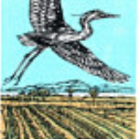 Blue heron farm logo