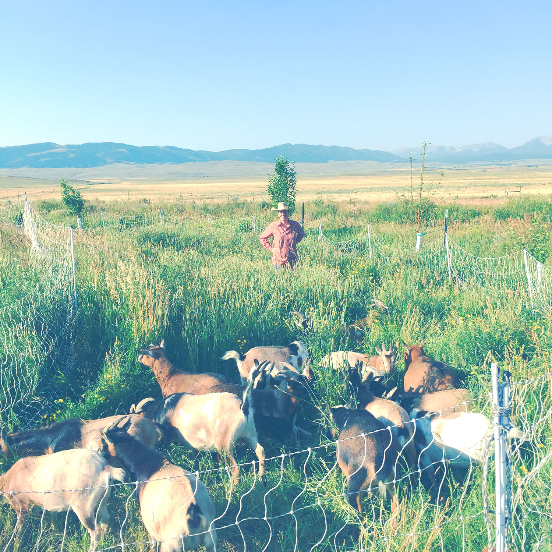 Cloud Nine Farm Montana