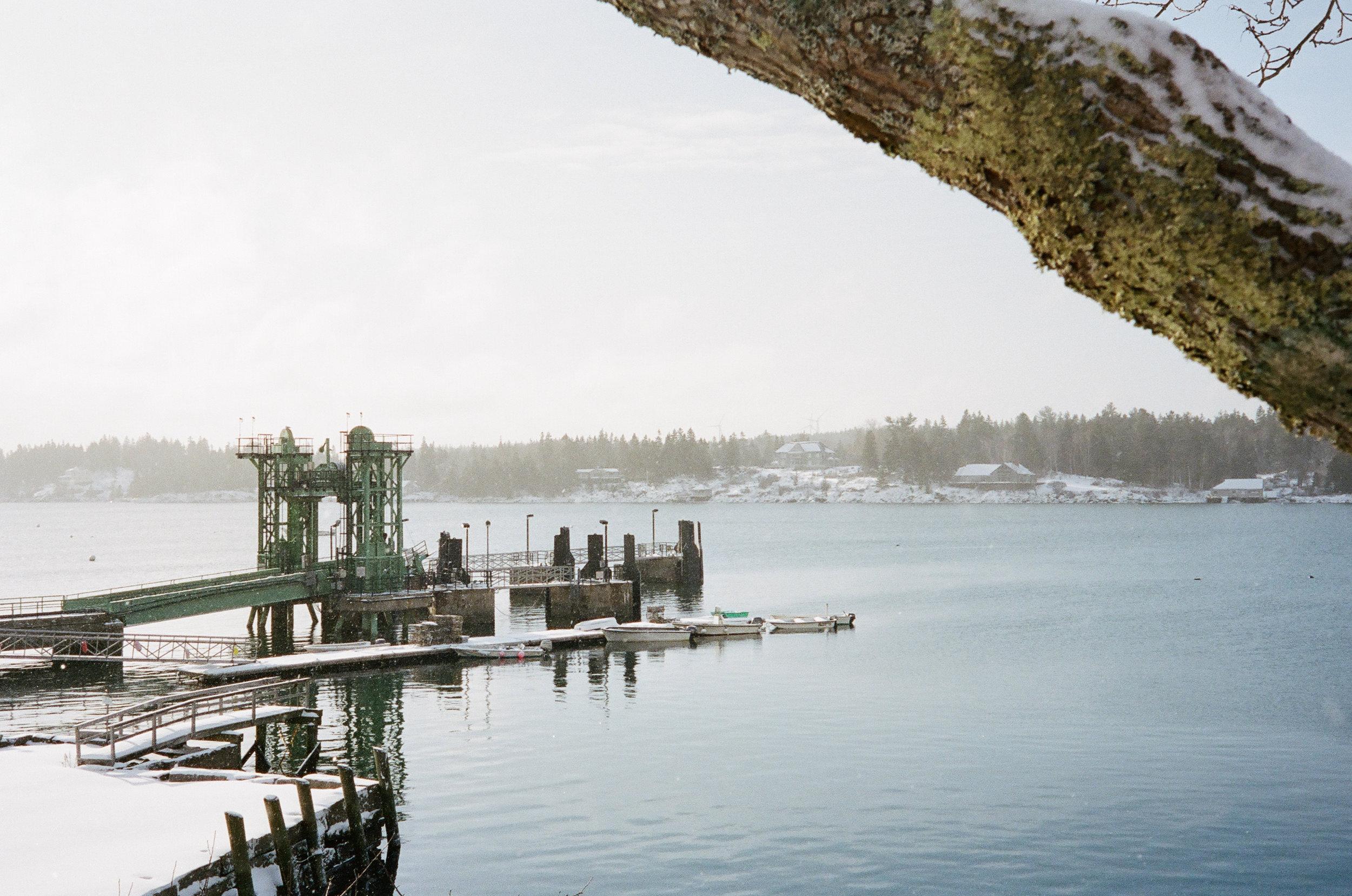 Ferry Dock, 2016 – Photo by Bill Trevaskis