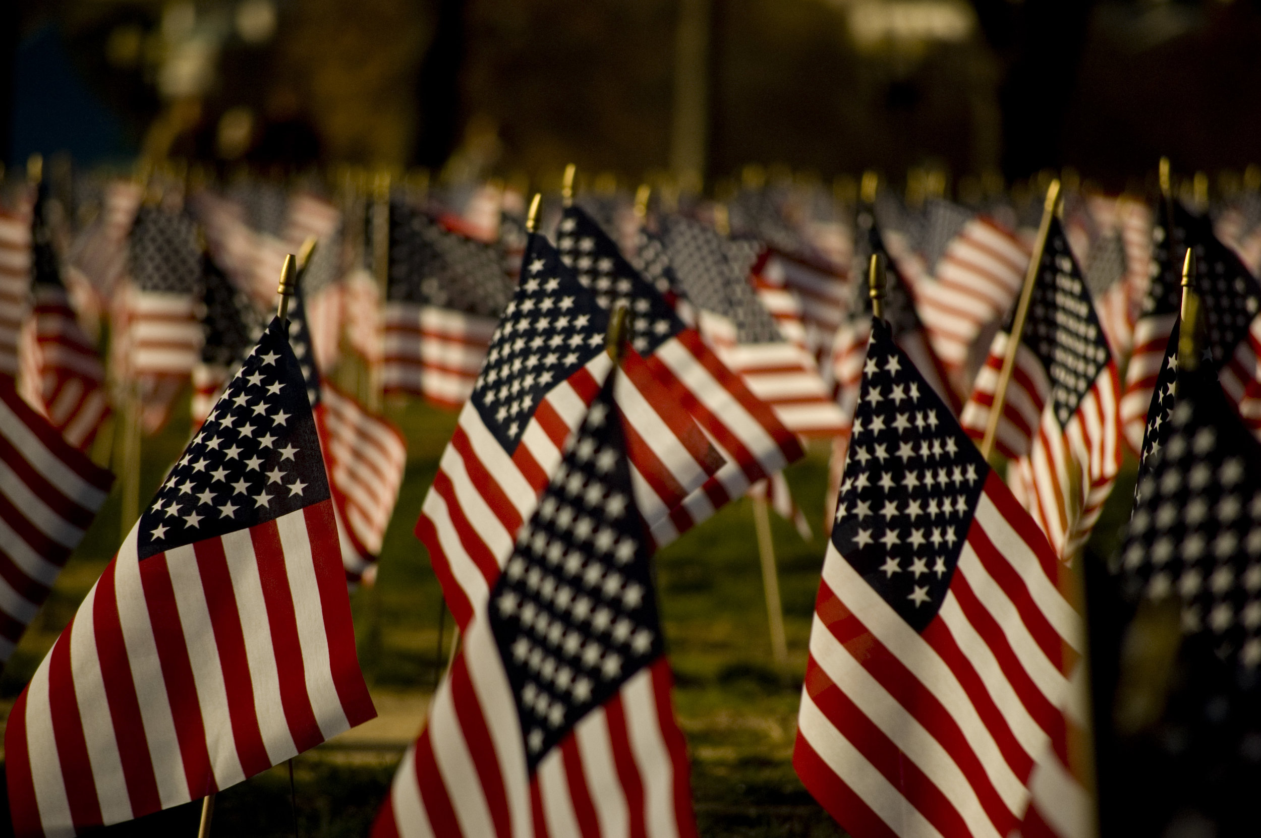 U.S._flags_on_the_National_Mall,_2007.jpg