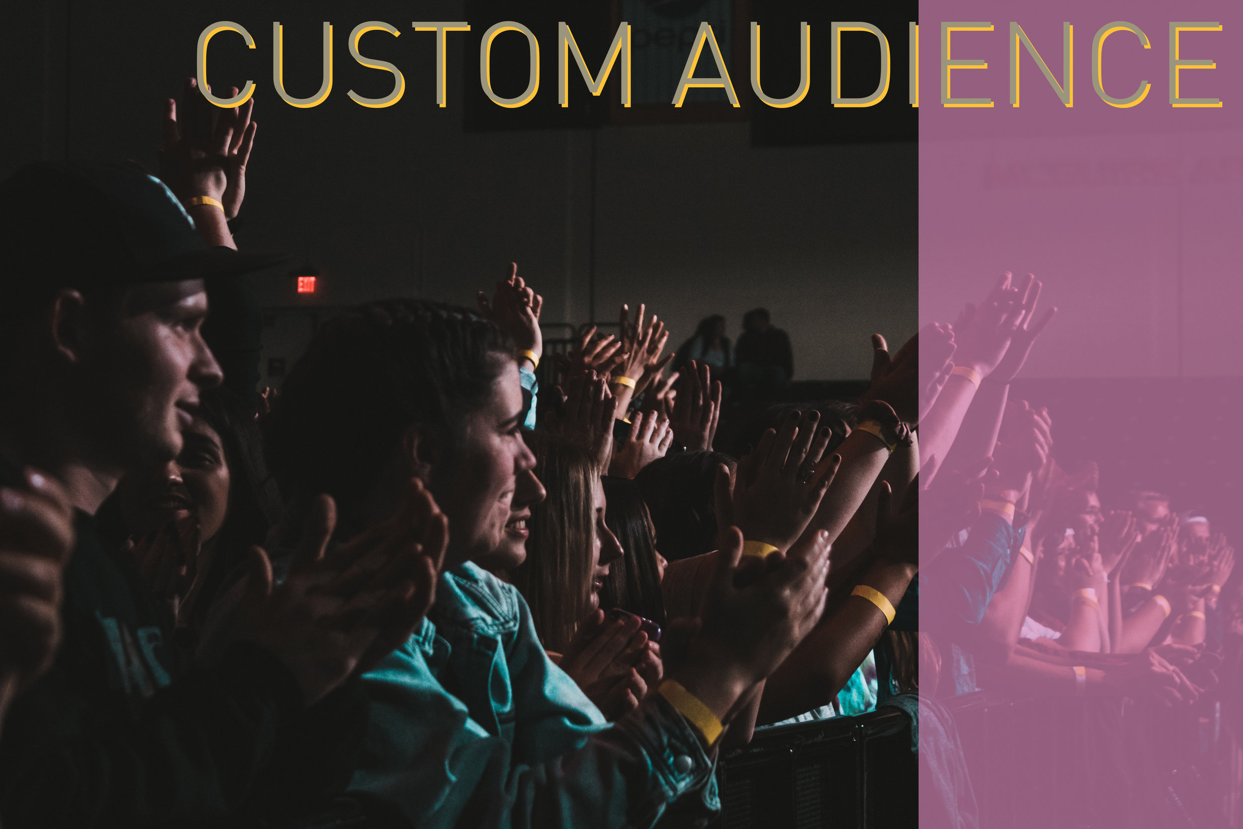 Custom-Audience.jpg